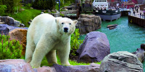 Erlebnis-Zoo Hannover © Erlebnis-Zoo Hannover