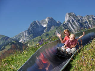 Sommerrodelbahn Rellerli © Gstaad Saanenland Tourismus